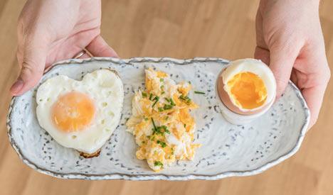 Skoro vše o vejcích